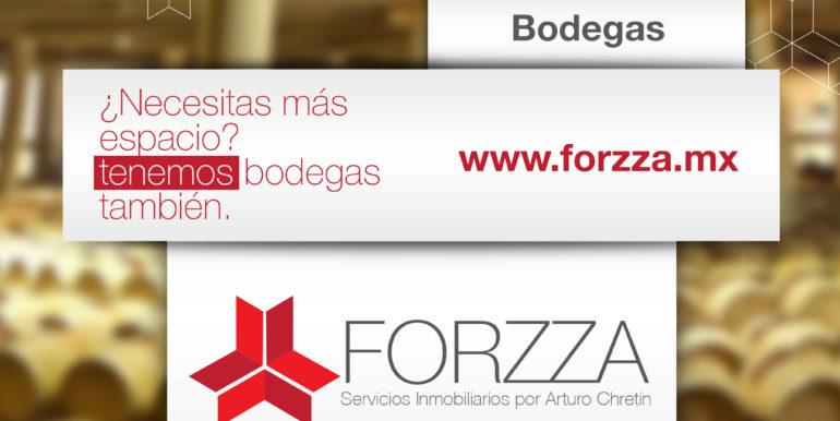 Forzza-Bodegas